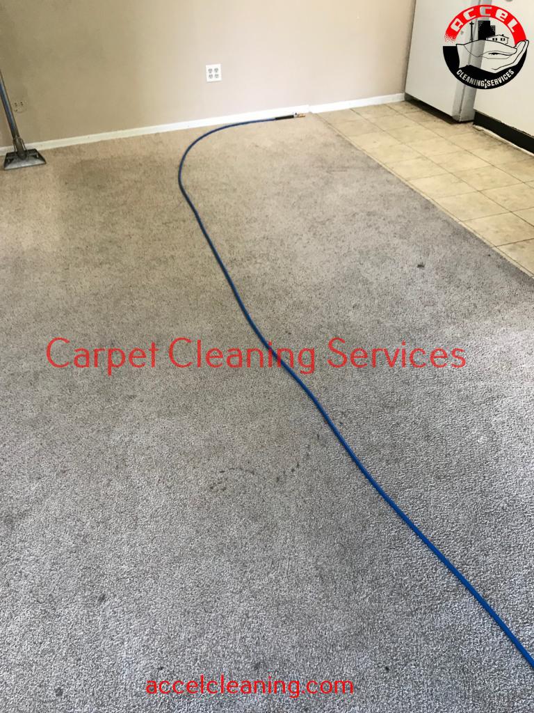 Carpet Cleaning Kent WA