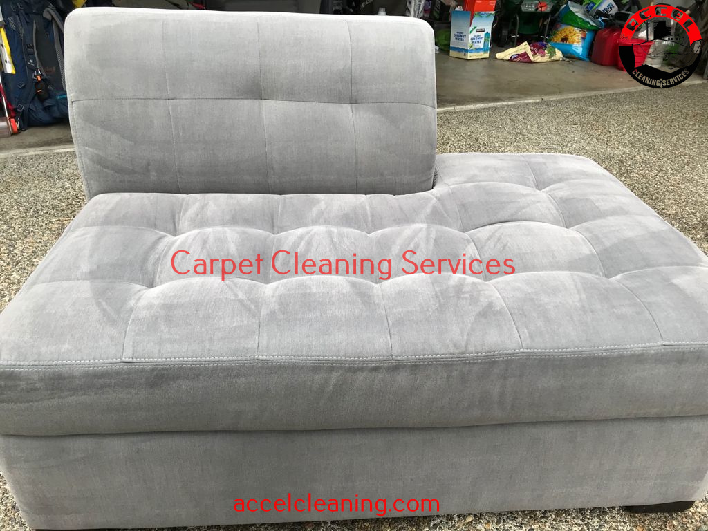 Carpet Cleaning Burien WA